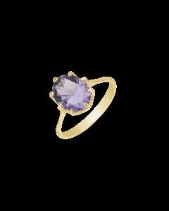 Støvring Design Ring i 8 Karat Guld med Ametyst 62165004